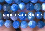 CTG762 15.5 inches 5mm faceted round tiny apatite gemstone beads