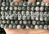 CZJ412 15.5 inches 8mm round green zebra jasper beads wholesale