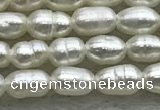 FWP153 15 inches 2mm - 3mm rice white freshwater pearl strands