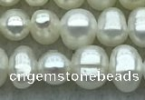 FWP28 14.5 inches 4.8mm potato white freshwater pearl strands
